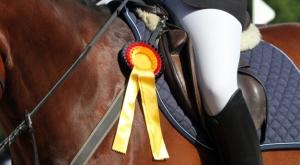 ascore-Rating: Auch die max-THV für Pferde glänzt mit herausragenden sechs Sternen