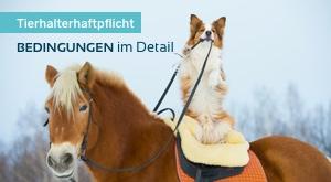 THV Hund: Tarifmerkmal Führen ohne Leine oder Maulkorb