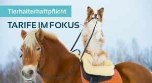 THV: Der richtige Tarif für Pferdezüchter
